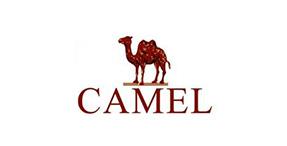 骆驼服饰CAMEL